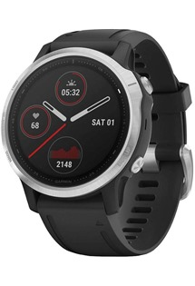 Garmin fenix 6S Glass Silver/Black